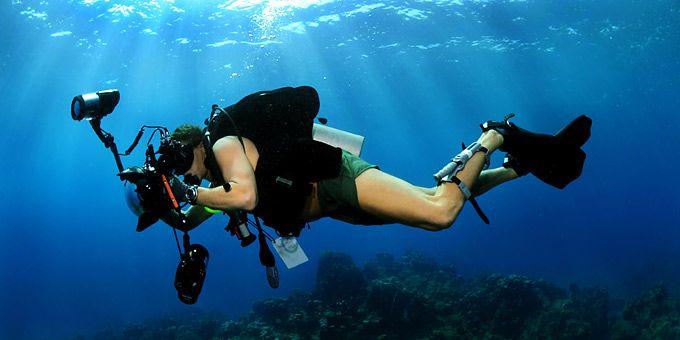 Η ανθρωπότητα προσπαθεί να κλέψει λίγη από την γοητεία του ωκεανού -   Φωτογραφική μαγεία από τους βυθούς των ωκεανών