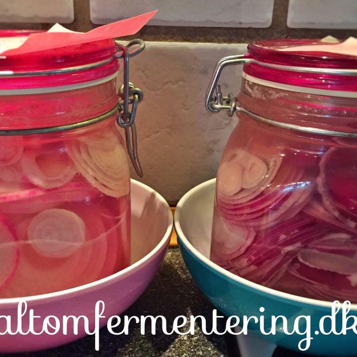 Fermenterede Løg   ALT OM FERMENTERING – Fermentering på den nemme måde