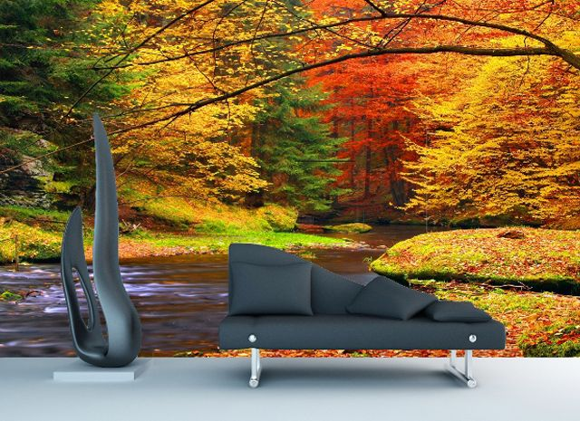 Autumn Splendour Scene   Wall Mural   From $399 Part 89