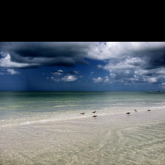 Island Beach Scenes: 10 Best Images About Florida Beach Scenes On Pinterest