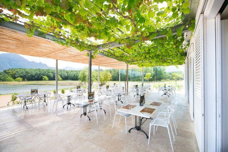 95 at Morgenster on Morgenster Wine & Olive Estate designed by Inhouse Brand Architects: www.inhouse.ws  #inhouse #winefarm