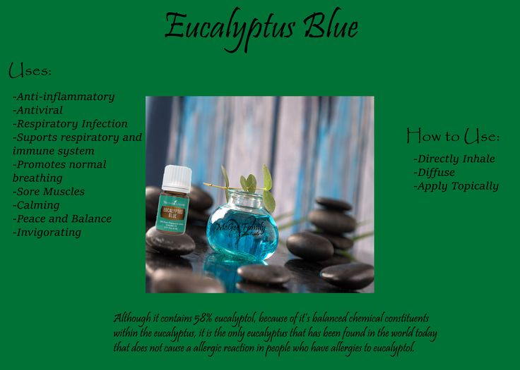 Eucalyptus oil is great for colds, congestion, and all things respiratory!