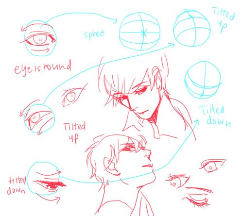 eyes from different angles