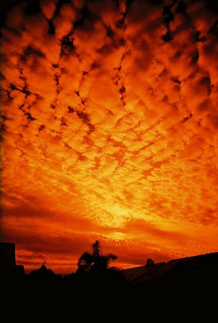 Skies of orange fire.