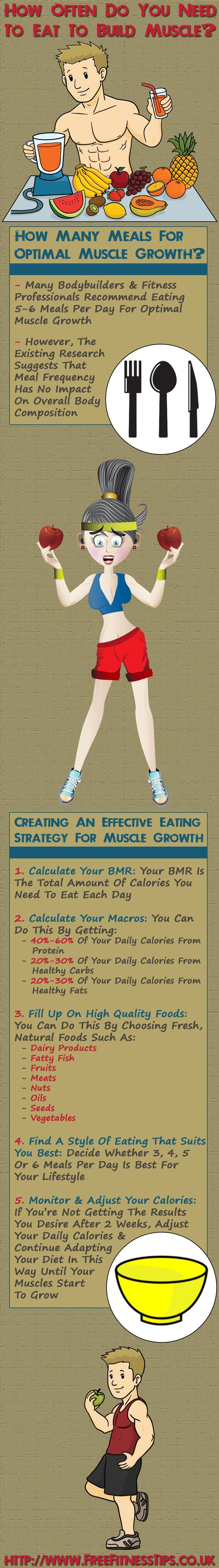 How Often Do You Need To Eat To Build Muscle