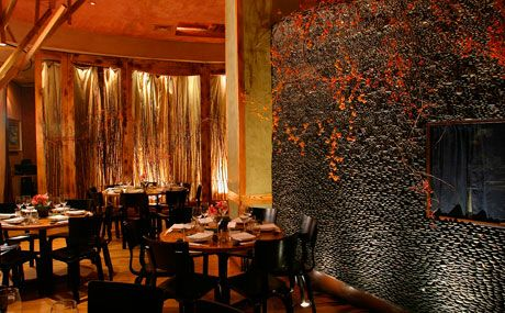 nobu in tribecca, one of my fav places to dine in nyc. it's not a trip to nyc without eating here. the interior design is by rockwell, another plus.