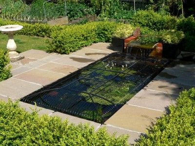 25 best outdoor ideas images on pinterest nuthatches for Koi pool cover