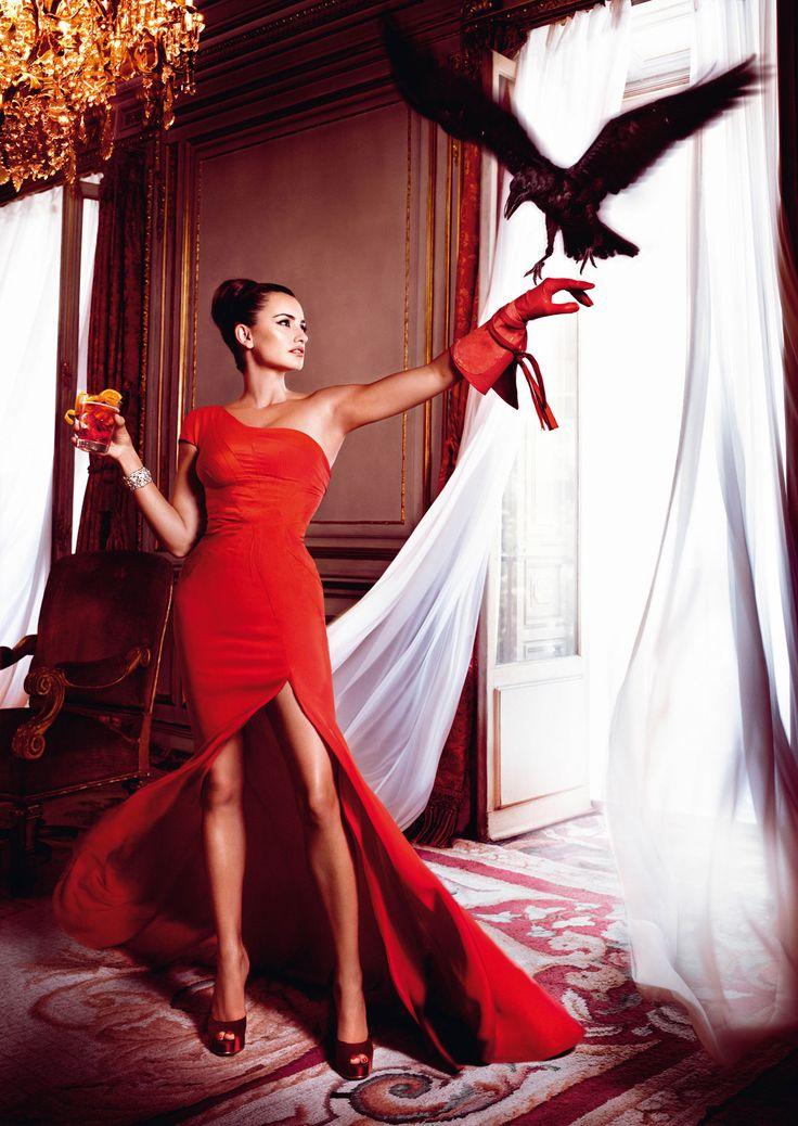 Campari & Penelope Cruz Calendar 2013 - Bird Flying Into A Room