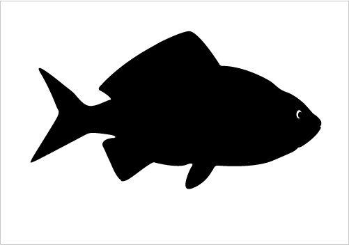 Big Fish Silhouette Graphics Silhouette Graphics
