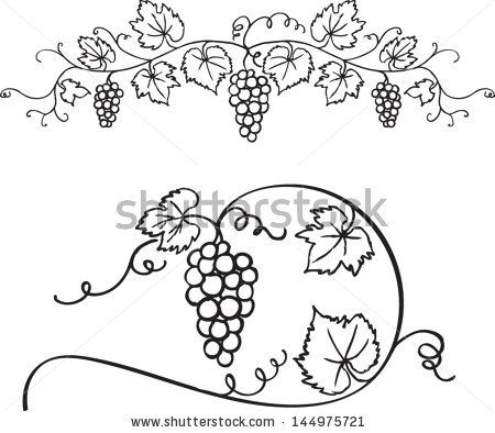 Decorative grapes & vine vector ornament - stock vector