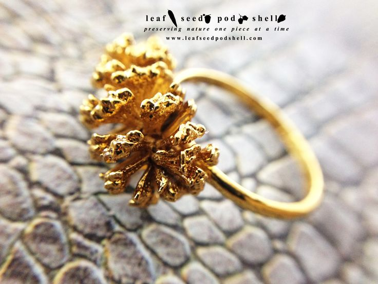 Tiny pine cone ring in a super rich gold electroformed finish.  I've added quite a few of these pine cone rings to our store in a heap of different ring sizes and finishes.  This particular ring is a size 8.  Store link in bio.  #leafseedpodshell #crystal #crystals #electroform #electroforming #electroformed #jewelry #jewellery