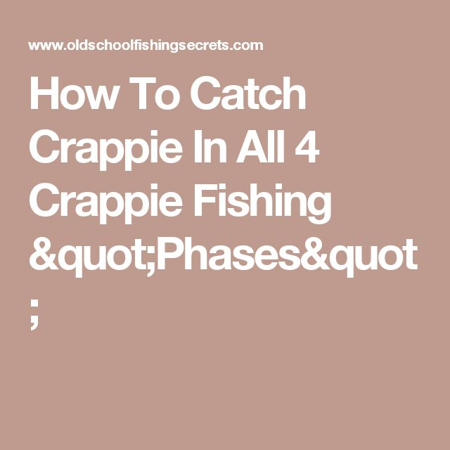 """How To Catch Crappie In All 4 Crappie Fishing """"Phases"""""""