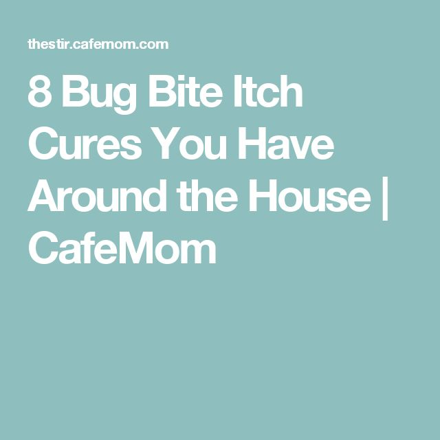 8 Bug Bite Itch Cures You Have Around the House | CafeMom