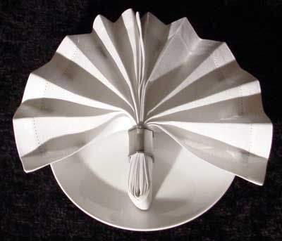 Best 20 Fancy Napkin Folding Ideas On Pinterest Folding