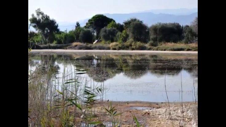 Αίγιο δράσεις /  actions in Aigio Greece You can watch this video subtitled in English by ckicking the appropriate button