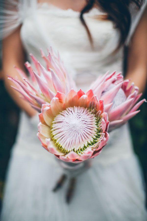 protea bouquet http://weddingwonderland.it/2015/06/fiori-per-un-matrimonio-in-estate.html
