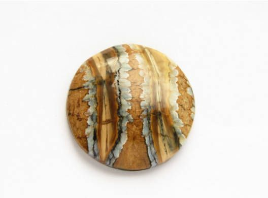 Mammoth tooth molar cabochon round fossil russian fossils for