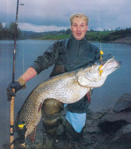 467 best poissons d 39 eau douce freshwater fish images on for 99 5 the fish