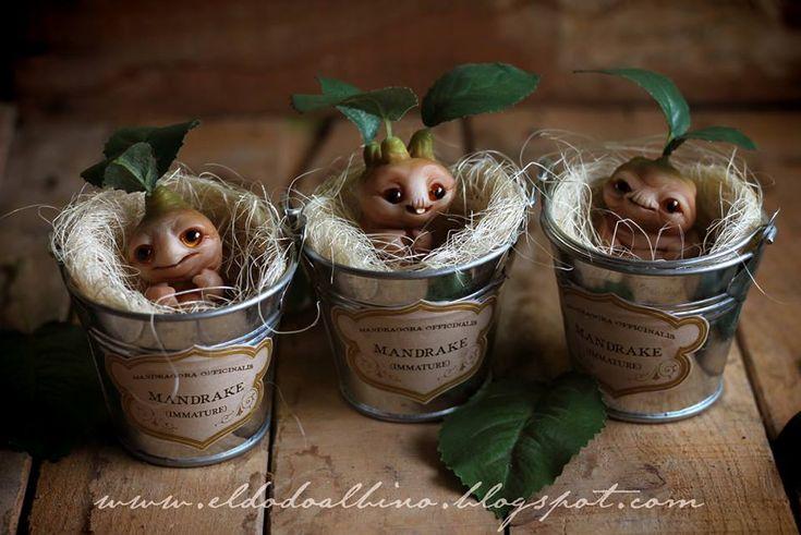 Baby Mandrakes! #HarryPotter