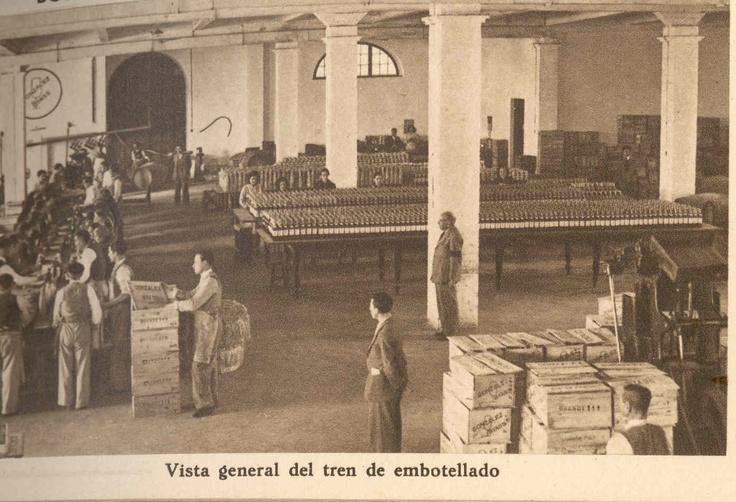Tren de embotellado. / Bottling assembly line.