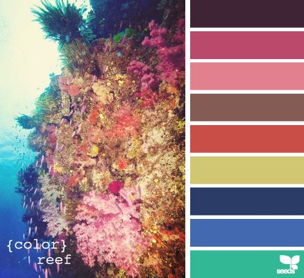 Reef colorCoral Reef, Color Palettes, Design Seeds, Colors Reef, Art Journals, Colors Palettes, Colors Schemes, Crafts Painting, Colors Inspiration