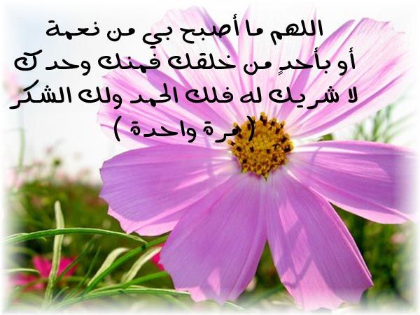 أذكار الصباح والمساء مكتوبة كاملة بالصور 2016 جميع اذكار الصباح و اذكار المساء مصورة للموبايل بخط كبير بالتشكي Islamic Love Quotes Image Quotes Instagram Posts