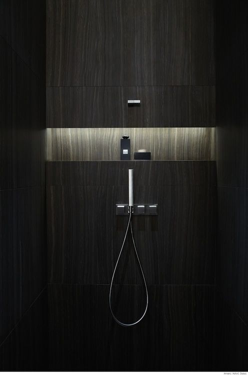 Niche in wall of shower--horizontal niche.  Need not be lighted.  LED-strip illuminated bathroom niche