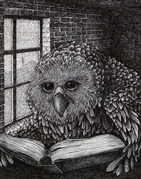 Owl Illustration by BeastsandBirdies on Etsy, £50.00