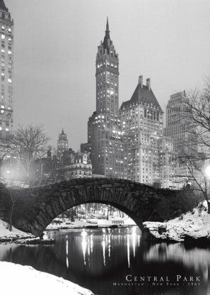 Central park! New York City at Christmas time.