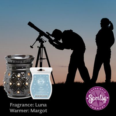 A night spent stargazing! Such a fun honeymoon destination!  #scentsyhoneymoon