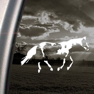 Amazon.com: Paint Horse Decal Car Truck Bumper Window Sticker: Arts, Crafts & Sewing