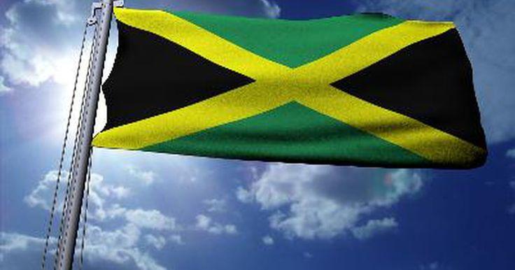 Información sobre la música reggae. La música reggae es un estilo muy popular de música de Jamaica, y sus raíces pueden remontarse a 1960. A lo largo del tiempo, muchos artistas del reggae recibieron atención en los Estados Unidos, lo que popularizó el estilo y lentamente lo trajo a las principales audiencias. Para poder entender este género musical, debes conocer su historia e ...