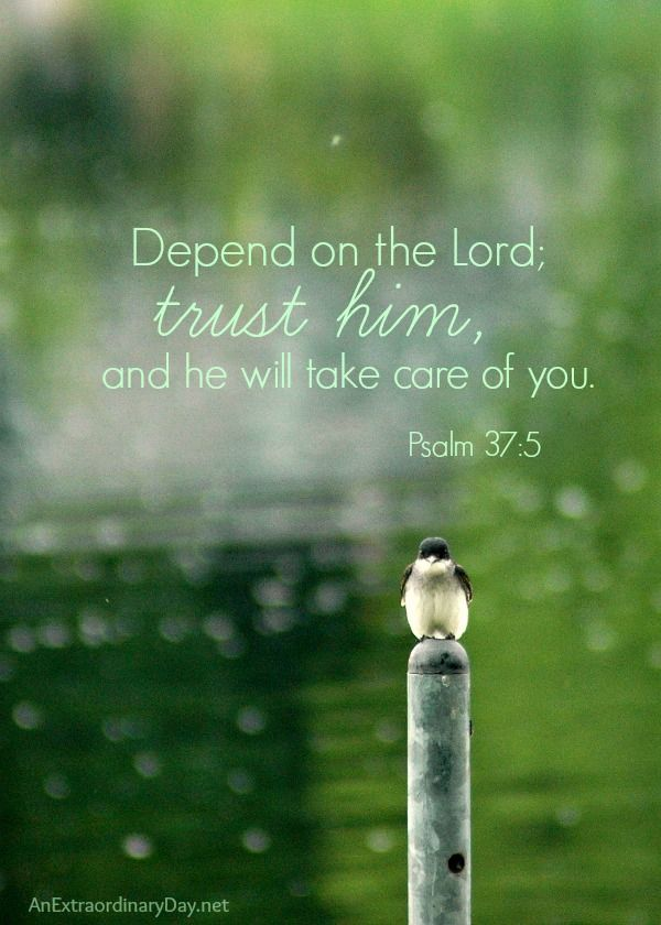 Depend on the Lord - Psalm 37:5 ~ Missing God's Blessing :: AnExtraordinaryDay.net