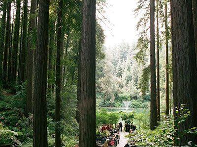 Nestldown Los Gatos Mountains Wedding Venue Rustic Redwoods Wedding 95033
