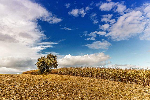 Brodnica | Flickr - Photo Sharing!