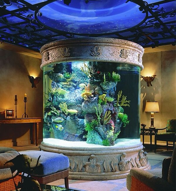 ..Decor, Ideas, Living Rooms, Fish Tanks, Interiors Design, Dreams House, Fish Aquariums, Bedrooms, Home Aquariums