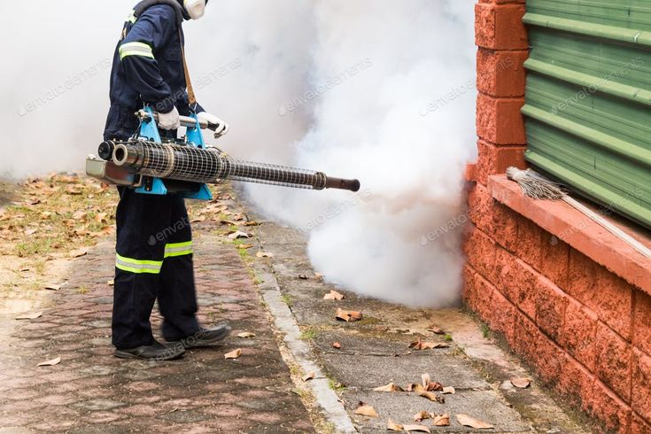 Worker Fogging Residential Area With Insecticides To Kill Aedes Photo By Thamkc On Envato Elements Insecticide Photo Fog