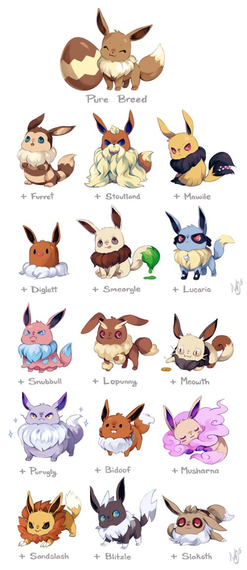 Mixed Breed Eevees / Oh my gosh I want the + Musharna and + smeargle! So cute