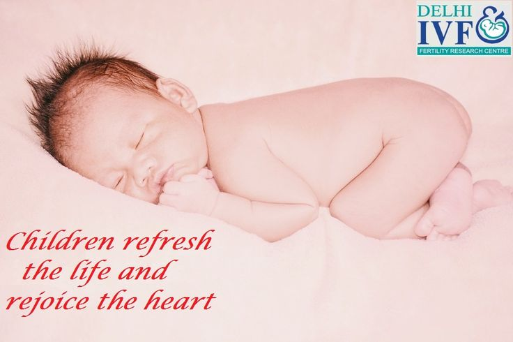 Children refresh the life and rejoice the heart