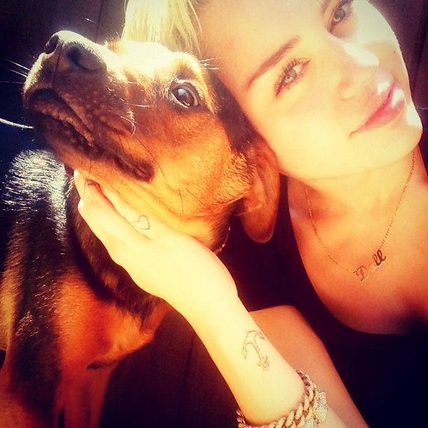 The Best of @Miley Cyrus - #DogsofInstagram: When Miley Cyrus signed on in May 2013, she did what every self-respecting puppy owner must do, and flooded the zone with pictures of her pooches. Including this selfie with Happy.