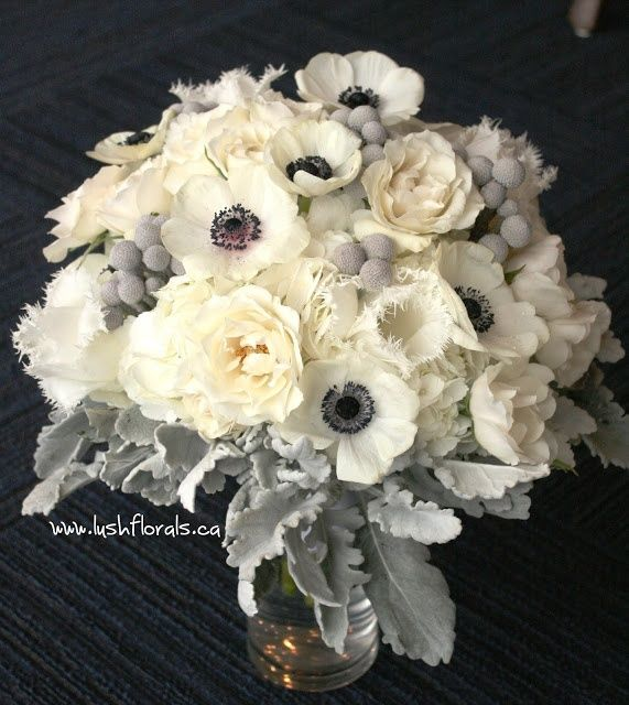 The bridal bouquet will be a clutch of cream hydrangeas, ivory garden roses, white fringe tulips, white anemones, ivory spray roses, silver brunia, and grey dusty miller wrapped in ivory ribbon.