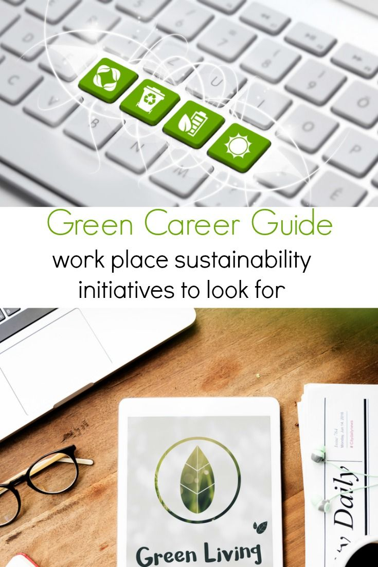 Green Career Guide Sustainability Initiatives To Look For In An
