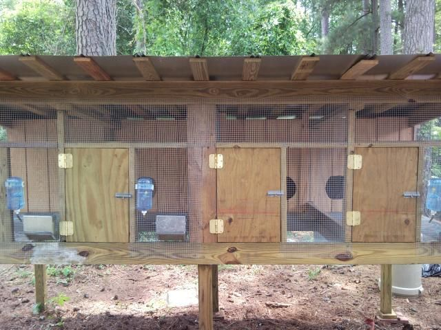 1000 ideas about outdoor rabbit hutch on pinterest for Rabbit hutch plans easy
