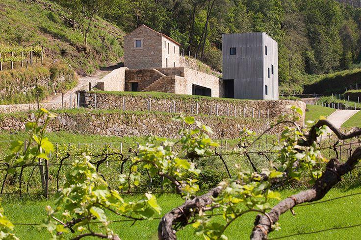 correia/ragazzi arquitectos restores a winery in rural portugal