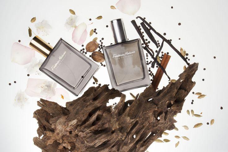 Tajemniczy i niezapomniany oud Jest jednym z najdroższych i najrzadszych surowców używanych w perfumiarstwie.  Jego zapach rozciąga się od nut zwierzęcych, poprzez ziemiste.   Zapach drzewa aloesowego znajdziesz w wodach perfumowanych damskich FM 363 i 364 oraz męskiej FM 335. Zapachy te określane są jako zmysłowe, otulające, uwodzicielskie. Dominuje w nich akord korzenny, ciepły i bardzo trwały, a dzięki umieszczeniu oudu w nucie serca, możemy sklasyfikować je w orientalnej rodzinie…
