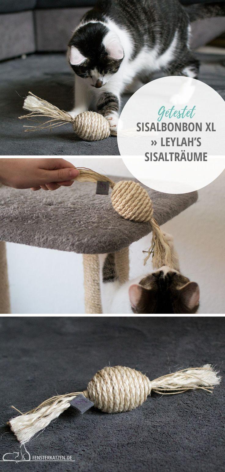 Sisalbonbon Xl Leylah S Sisaltraume Tiere Und Haustiere