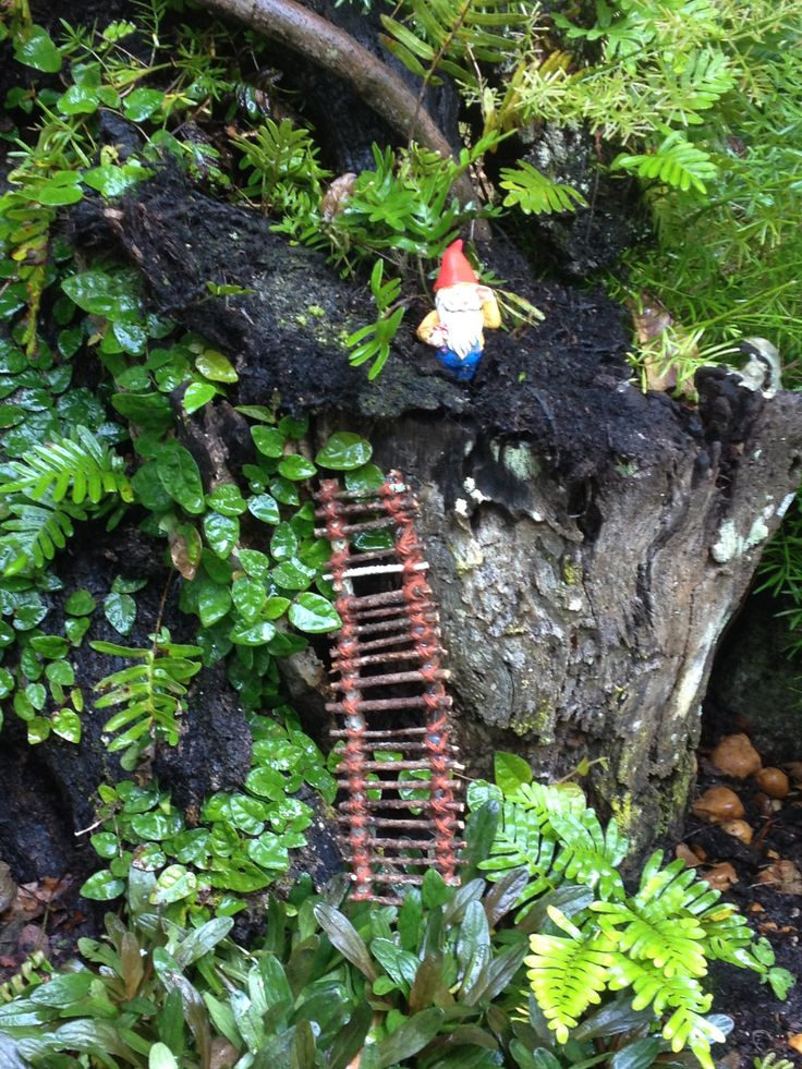 1000 Images About Fairy Gardens And Gnome Homes On Pinterest Gardens Fairy Gardening And The