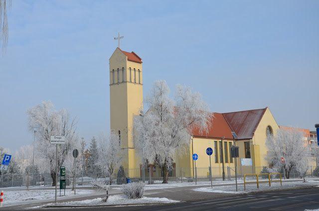 Kroniki Inowrocławskie: Srebrzysto- zimowa odsłona Kauli