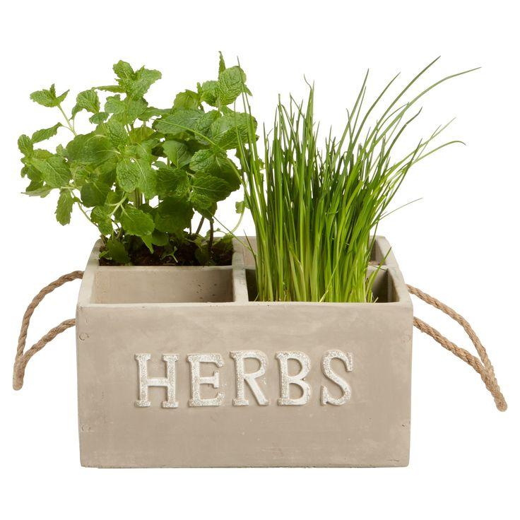 17 beste idee n over balkon planten op pinterest tuinplanten balkon tuin en tuinpotten - Voorbeeld van tuindecoratie ...