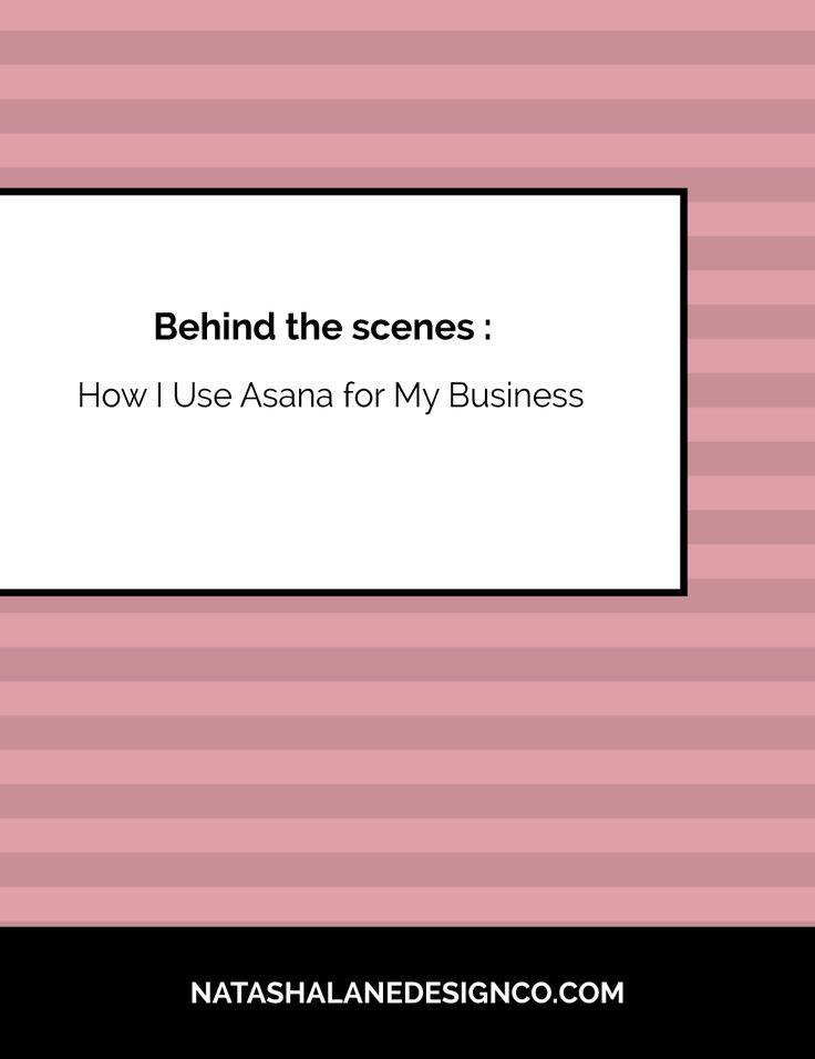 Asana | Productivity tips | Productivity | Small business organization | Entrepreneur Organization | Project Management | Project Management System | Asana Project Management
